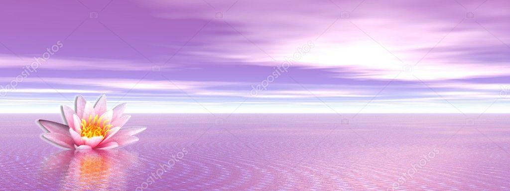 Lily flower in violet ocean