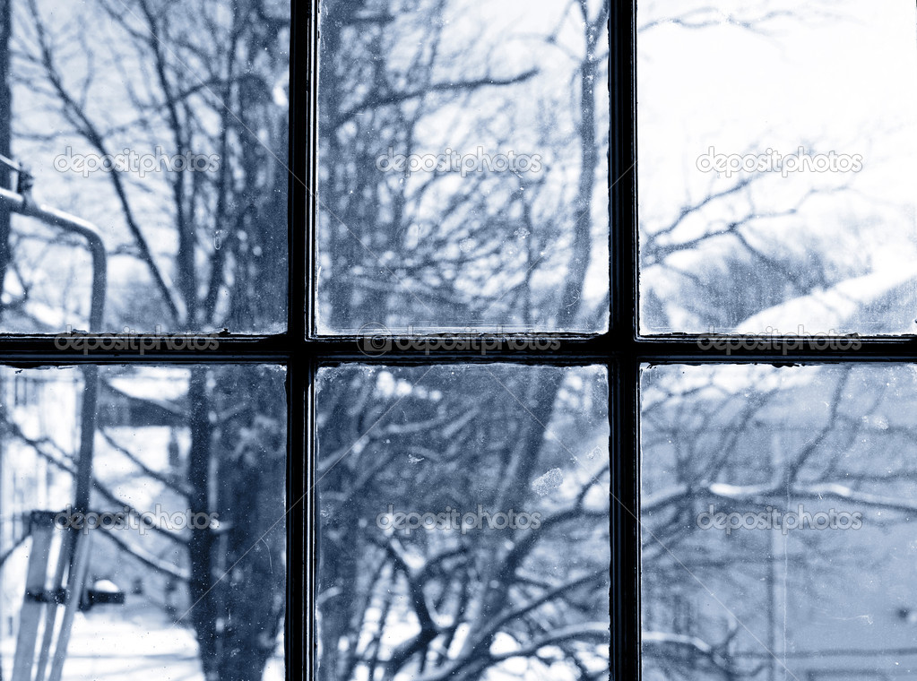 Winter view from window