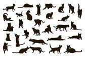Fotografie Cats silhoettes