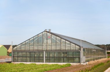 Greenhouse for agriculture