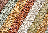 Fotografie mischung aus getrockneten linsen, erbsen, sojabohnen, bohnen - hintergrund