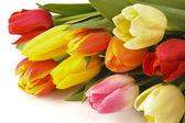 Velikonoční banda tulipány