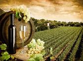 Fotografie Wein und Weinberg