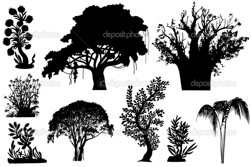 Vector trees of Africa