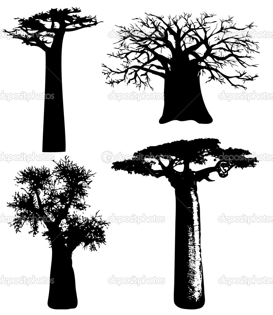 Trees of Africa - baobabs - vector