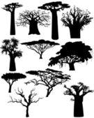 různé africké stromy a keře - vektor
