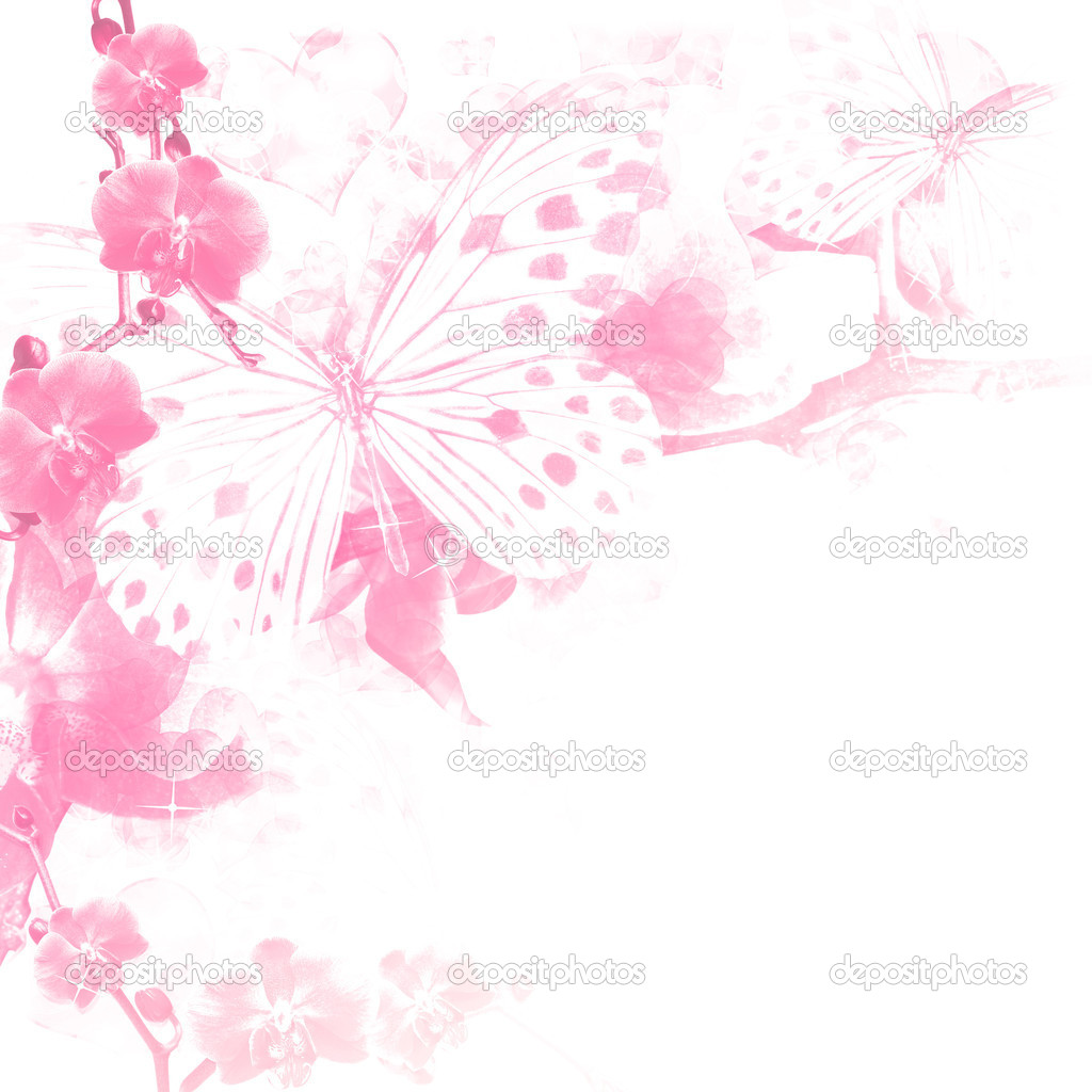 Butterflies and flowers pink background