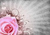 Fotografie grunge pozadí s růží