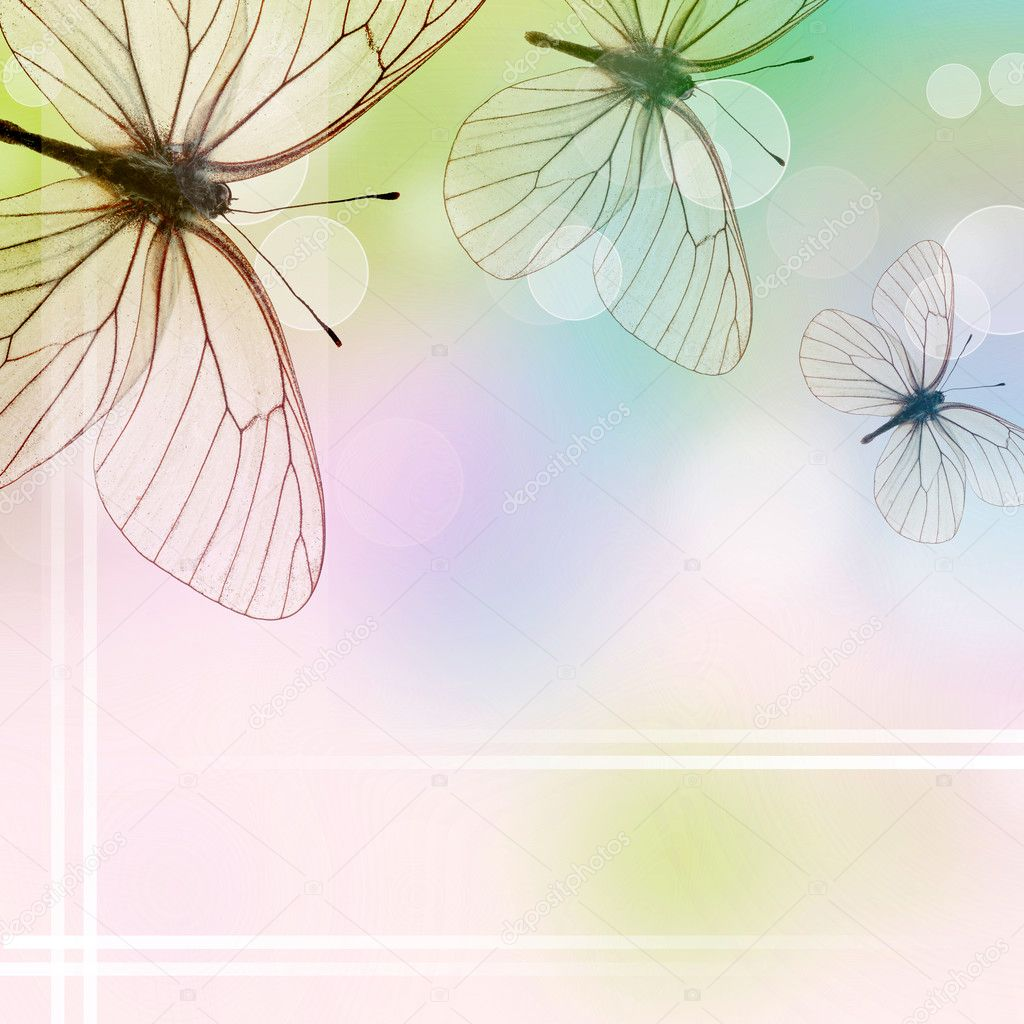 Beautiful Background With Three Butterflies and bokeh (1 of set