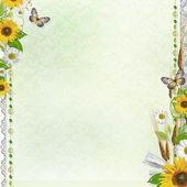 Summer background with butterfly, lace and flowers (1 of set)