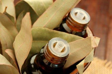 Bottles of essential oil and gum leaves(eucalyptus leaf)