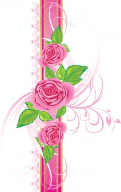 Pink roses with ornament on the decorative ribbon