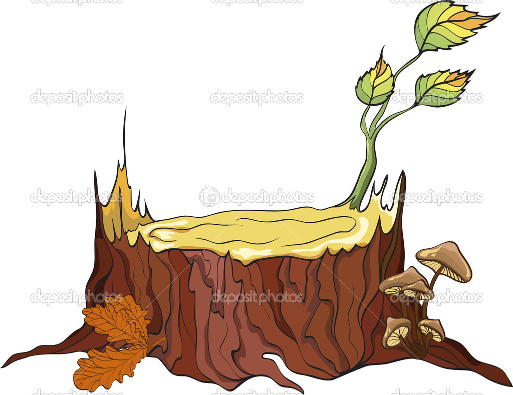 Tree Stub and mushrooms, detailed vector