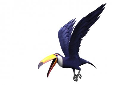 Flying toucan bird