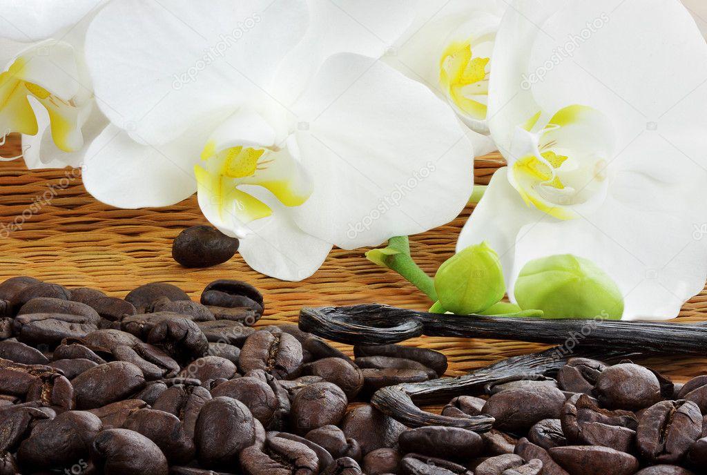 Gourmet Coffee Ingredients