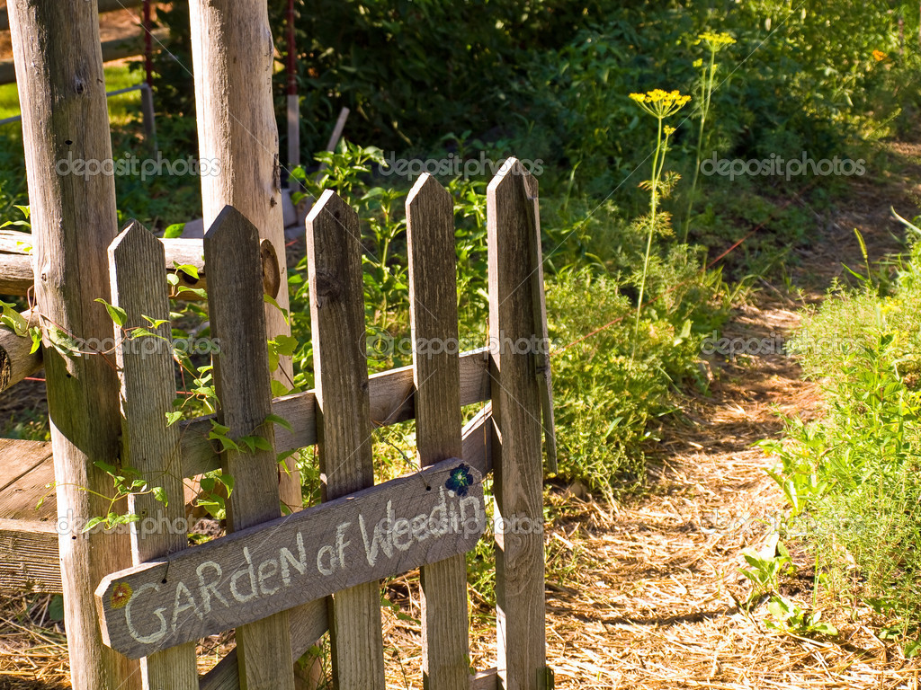Country Garden Gate Leading to the Garden of Weedin