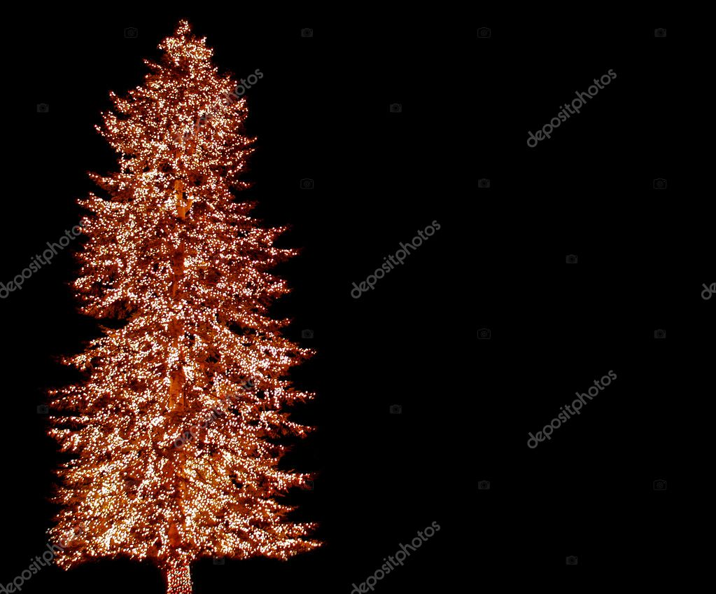 A large evergreen tree is decorated with from top to bottom with Christmas