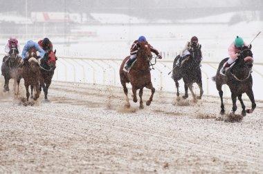 Winter horse racing