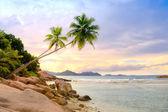 Palmen über dem Wasser