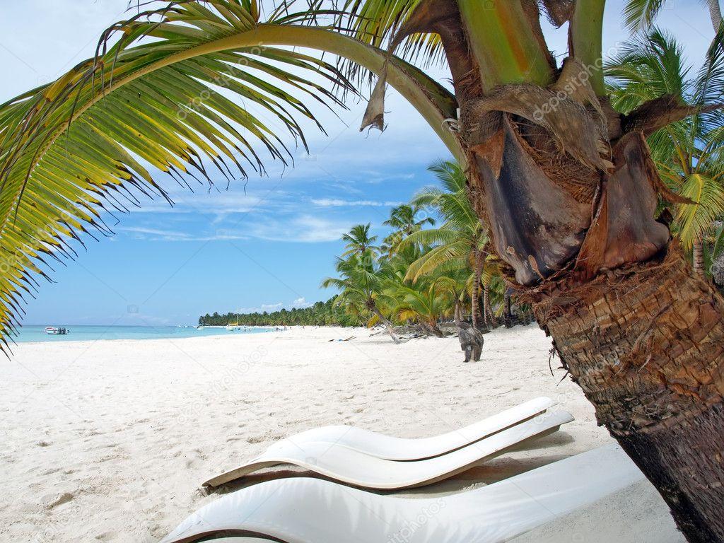 Exotic travel. Caribbean sea Dominican Republic Island Saona