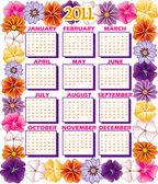 Fényképek 2011 naptár virág határ