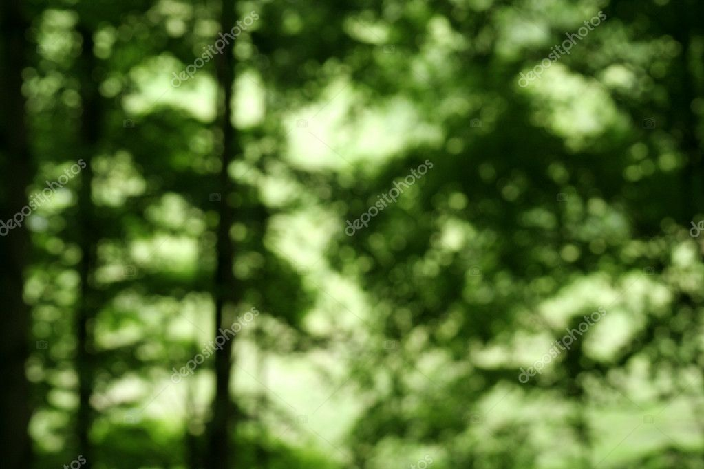 Defocused Forest