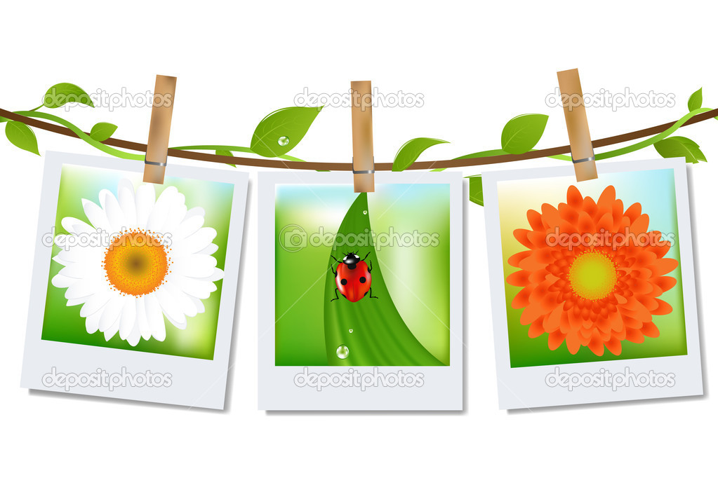 Photo Frames With Nature Image