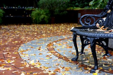 Street view at autumn with bench and leaves