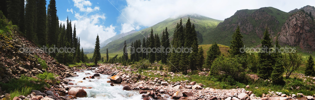 Panorama of a mountain river