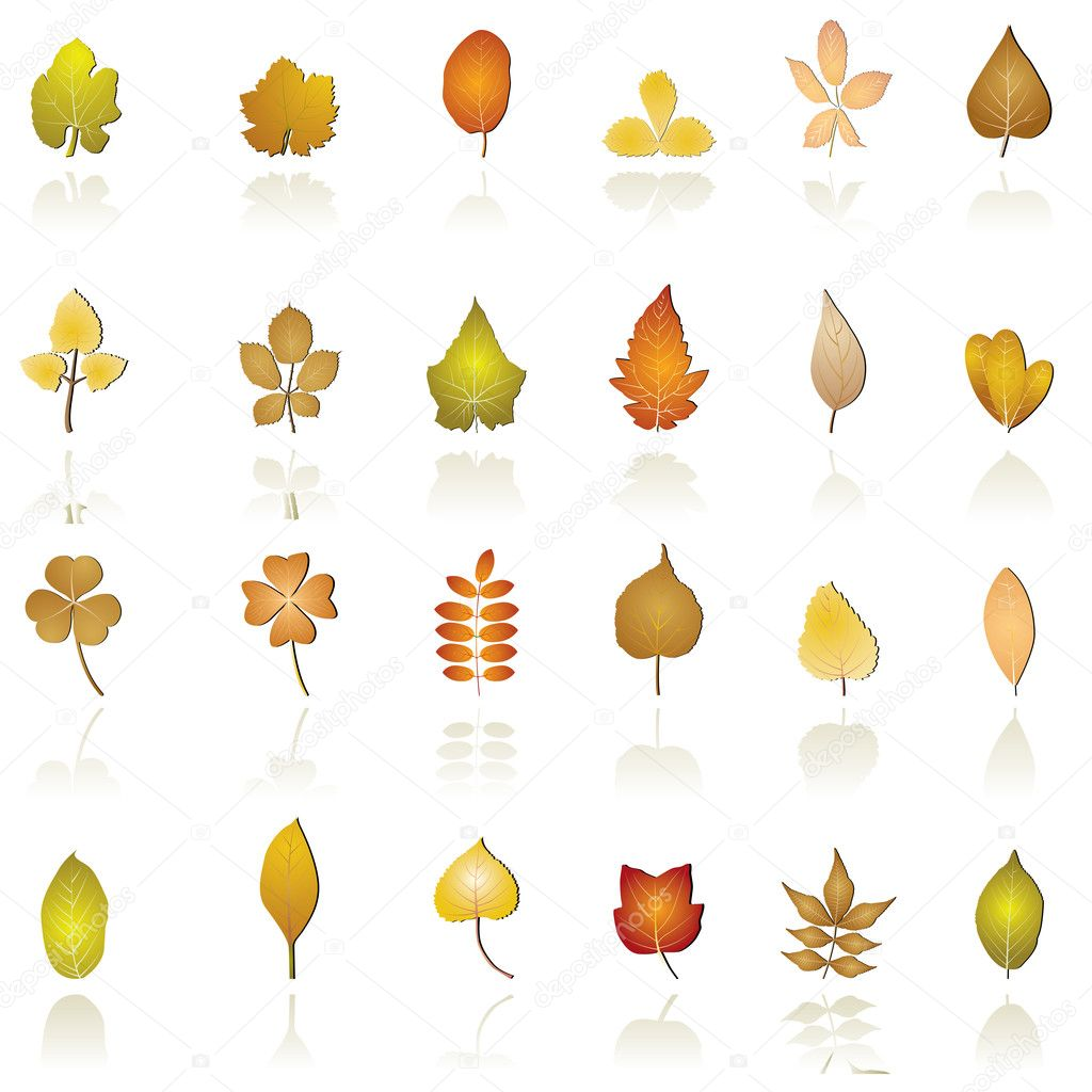 Autumn leaf background and icons
