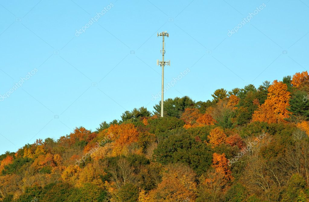 Cell Phone Tower in Fall