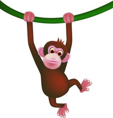 Cute ape