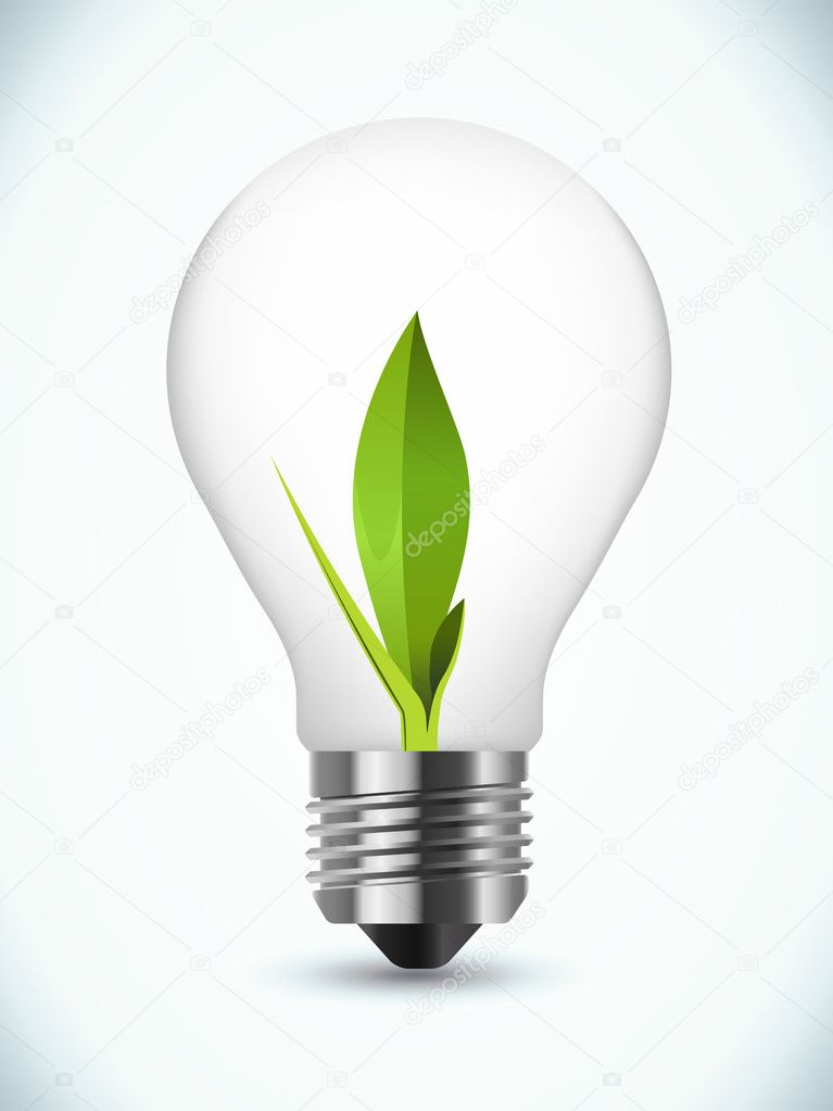 Bulb ecology concept