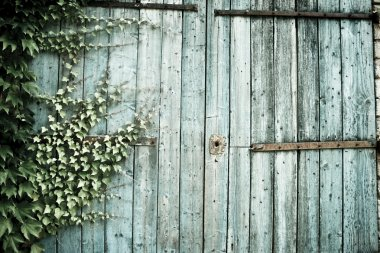 Old faded barn doors background