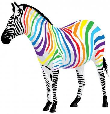 Zebra. Strips of different colors. Vector illustration.