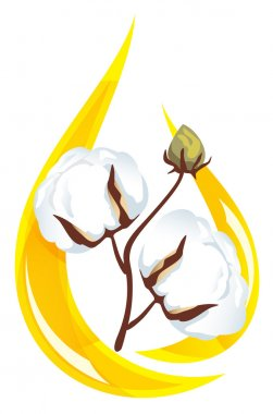 Cotton seed oil. Stylized drop of oil and a sprig of cotton insi