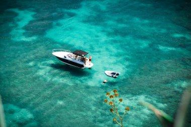 Snorkelling in clear ocean