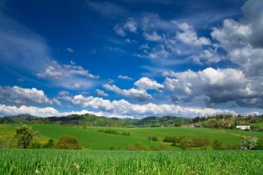 Spring landscape - green fields, the blue sky