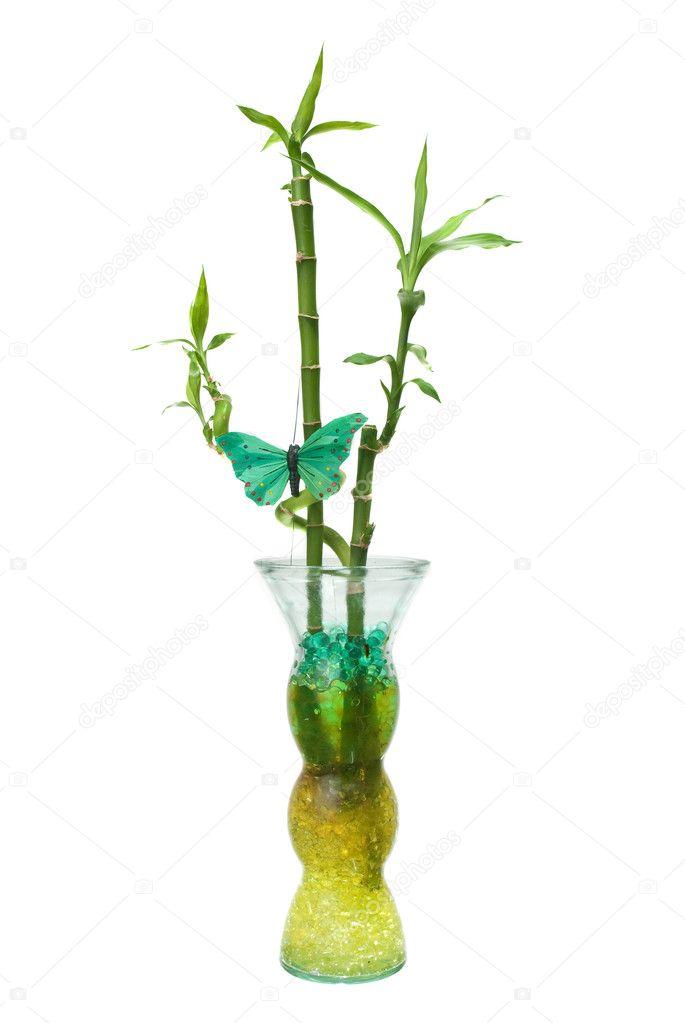 Bamboo In Vase Stock Photo Homydesign 4665682