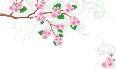Spring card Flowered sakura. vector illustration