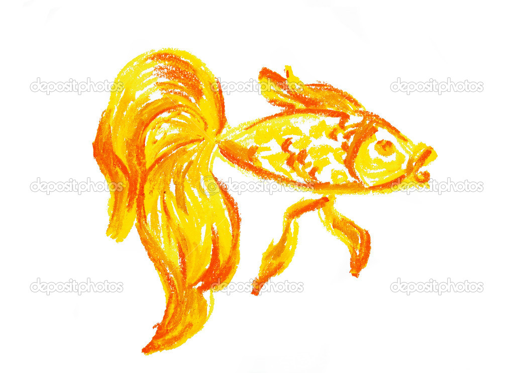 gold fish drawing isolated stock photo 4707281