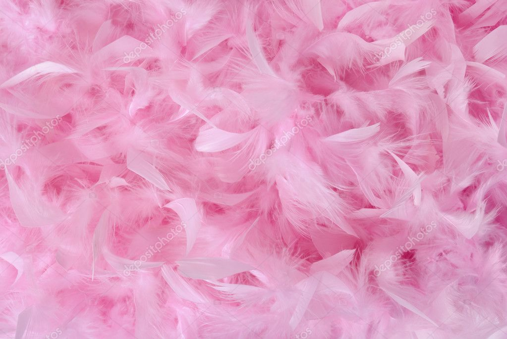 Small Pink Feathers In Pile