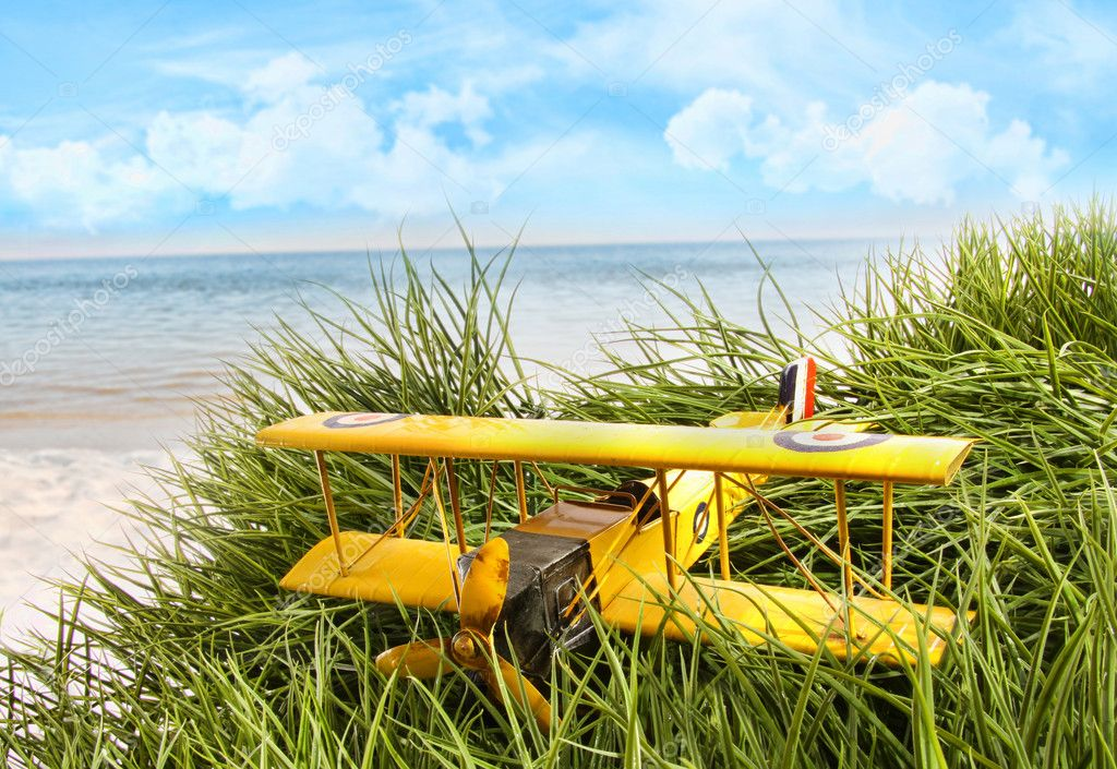Vintage toy plane in tall grass at the beach