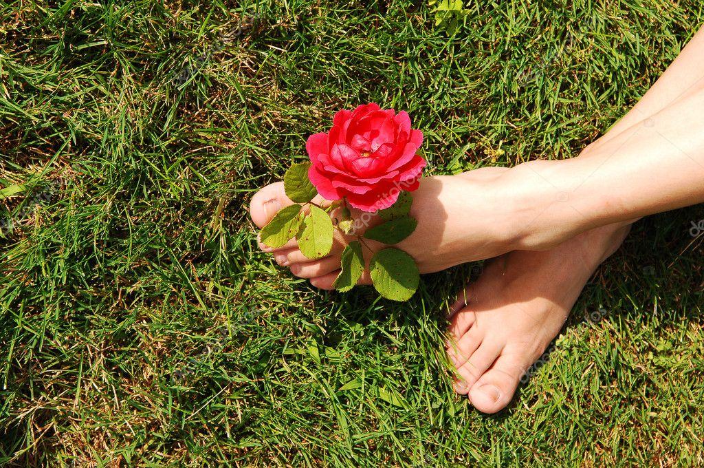 розочки между ног фото - 10
