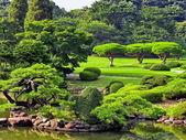 Japanische Park im Sommer