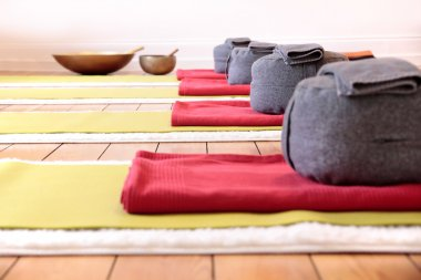 Yoga mats and Yoga Cushion