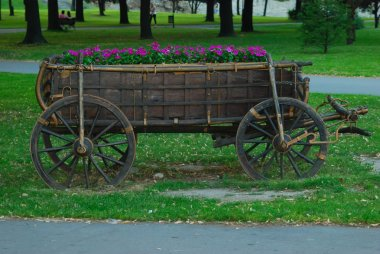 Ornamental coach