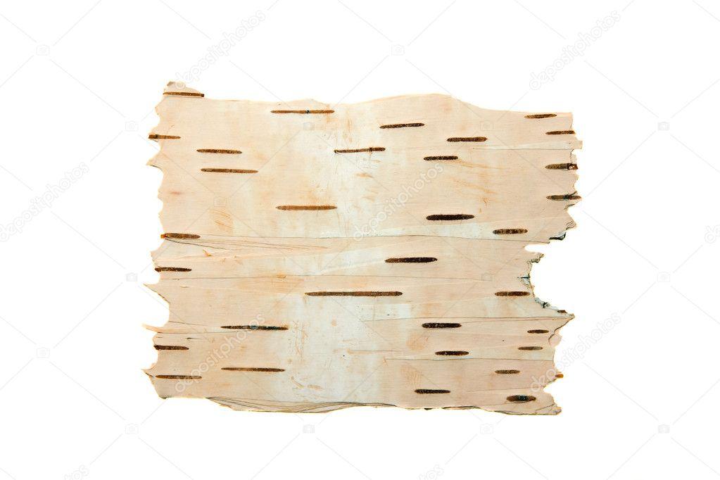 The cleared birch bark