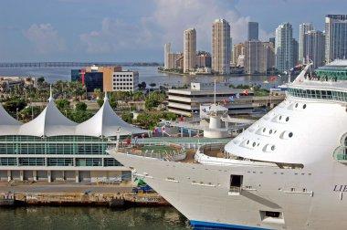 Cruise Ship in the Port of Miami