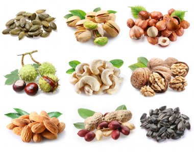 Collection of different varieties of nuts